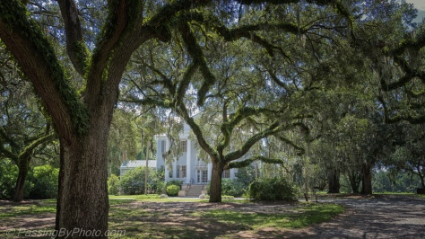 McLeod Plantation Family Home