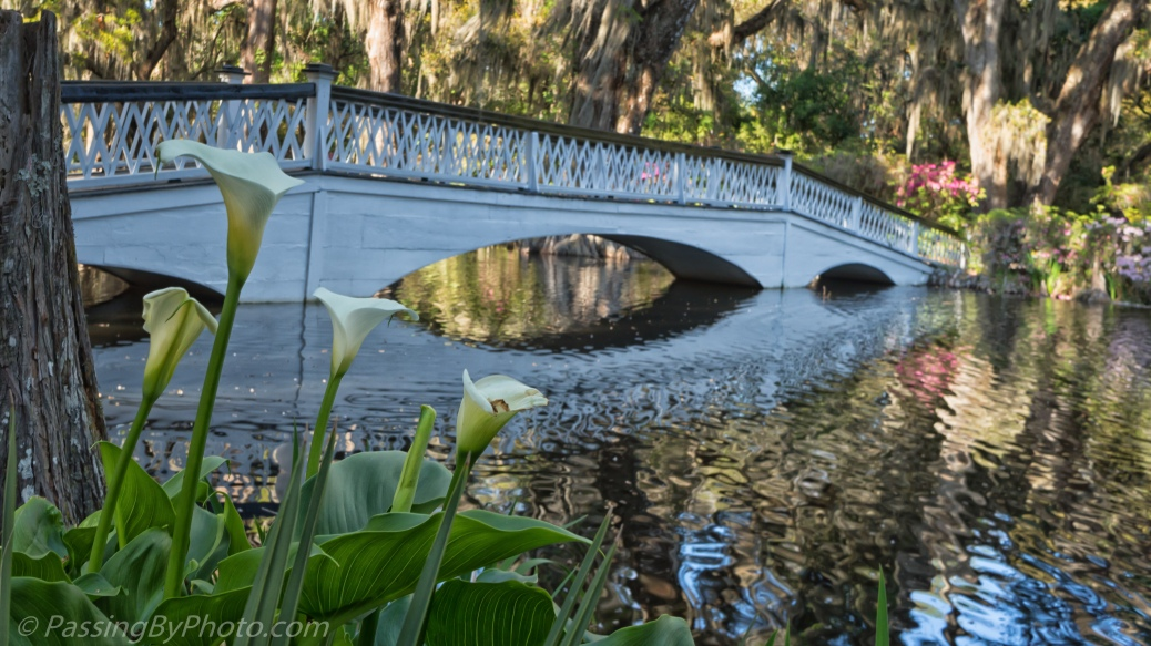 Magnolia Plantation: Long White Bridge
