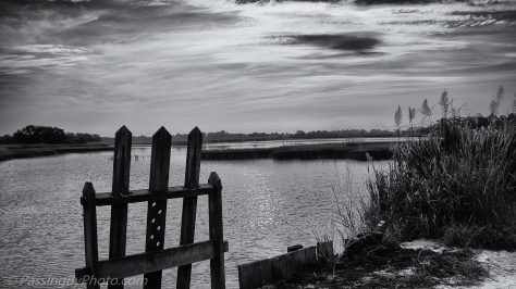 Black and White Landscape Old Rice Field Pond