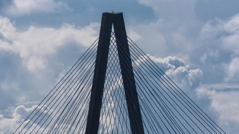 Southern Tower of the Arthur Ravenel Jr. Bridge