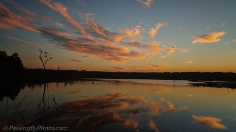 Sunrise Over Marsh Pond