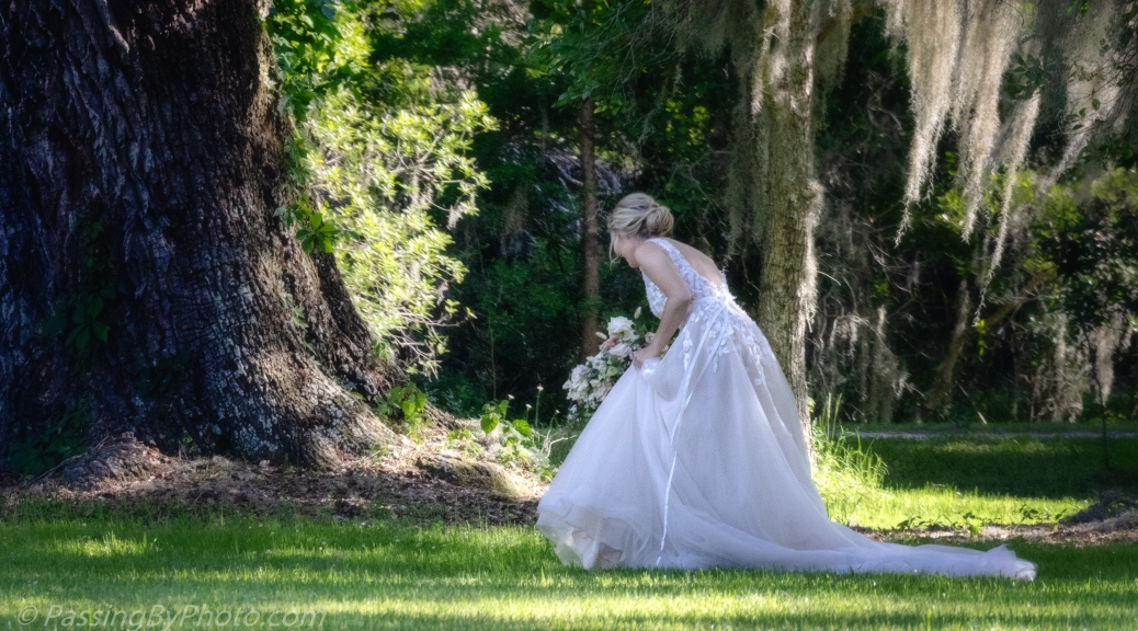 Bride Under an Oak Tree