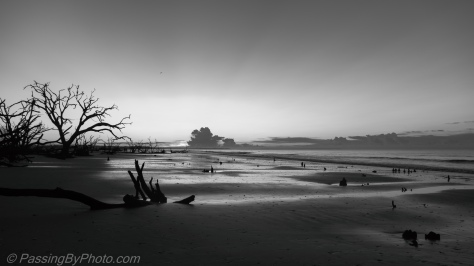 Sunrise at Botany Bay Beach, Black and White