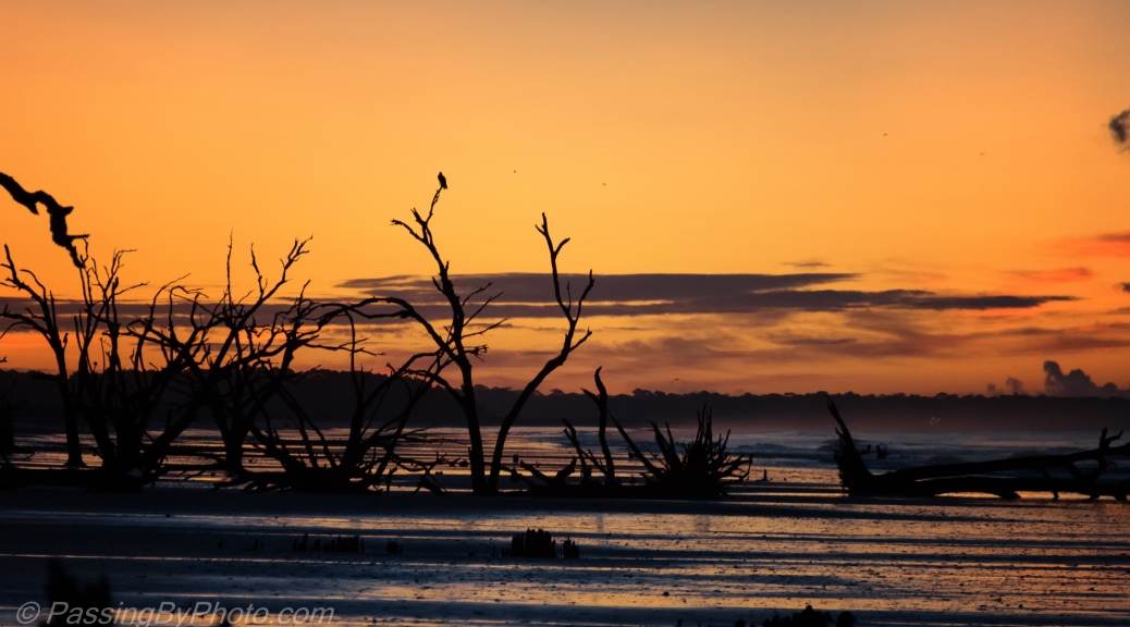Sunrise, Botany Bay Beach