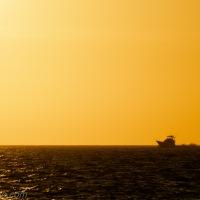 Golden Sunset, a Boat and a Bird
