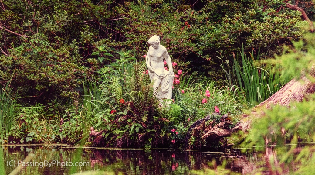 Statue, Pond, Gator and Turtle