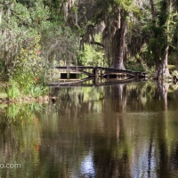 Update: Long White Bridge, Magnolia Plantation and Gardens