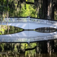 Long White Bridge, Magnolia Plantation and Gardens