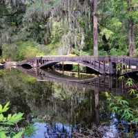 Update 2: Long White Bridge, Magnolia Plantation and Gardens