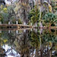 Update 3A: Long White Bridge, Magnolia Plantation and Gardens