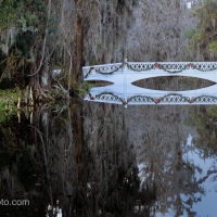 Update 4: Long White Bridge, Magnolia Plantation and Gardens